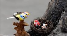 Märchengarten miniaturen Handwerk Landschaft Dekoration DIY Vogel/Nest/Eier Dekoration Wholesale freies verschiffen