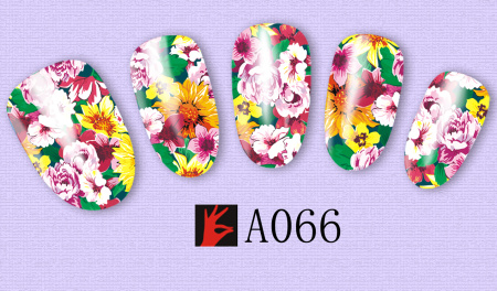 A066(1)