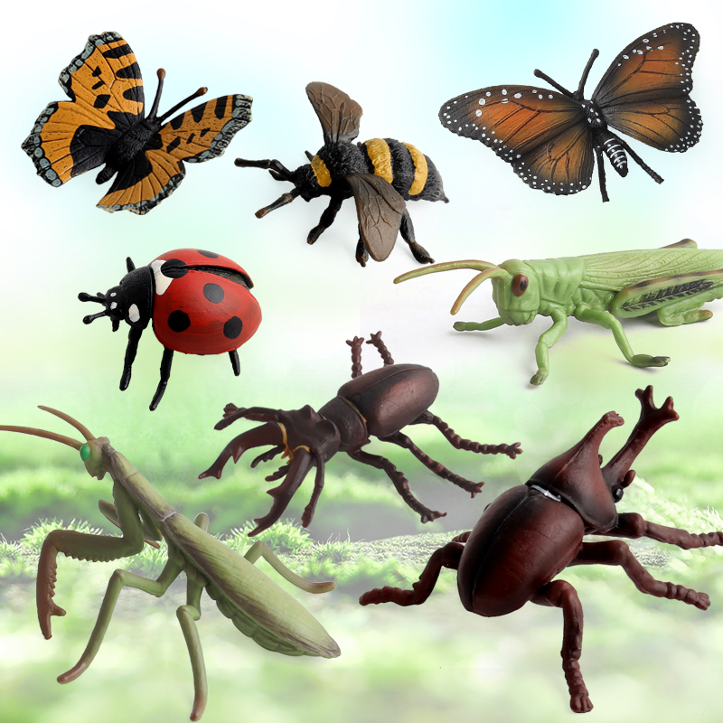 Insect Model 8 Styles Animal World Funny Toys For Kids Science Development Electricity Power Plastic Animal Model in Action Toy Figures from Toys Hobbies