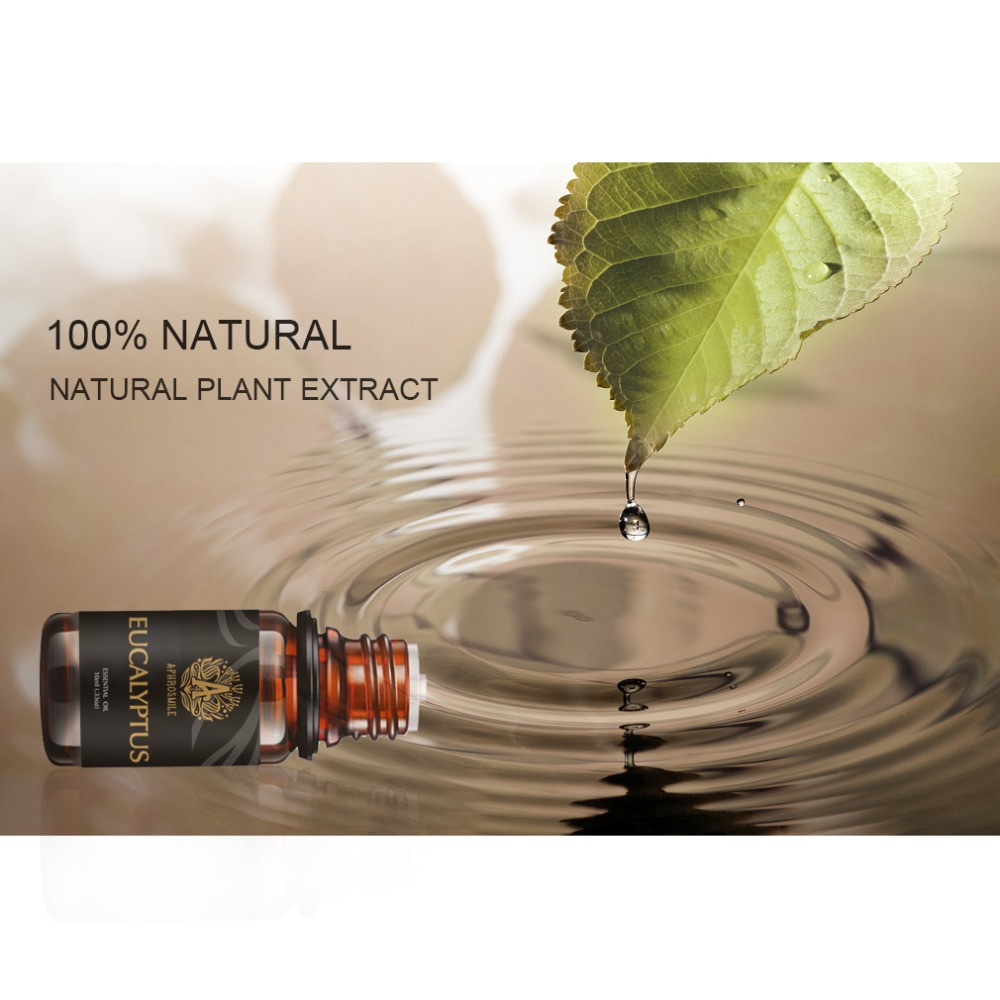 Pure Natural Organic Essential Oil Peppermint Eucalyptus Water-soluble Aromath Oil Promote Boosting Mental and Physical Vitality