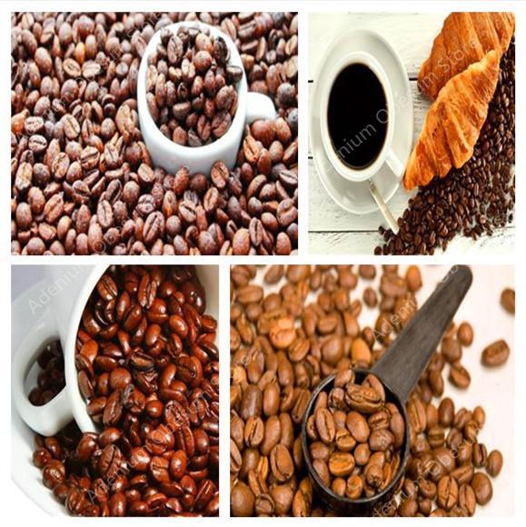 Grande promoção! Puro Grão De Café Arábica Coffea Arabica Árvore Bonsai Vasos Ao Ar Livre Fresco-100% Natural Coffeebean 50 pçs/saco