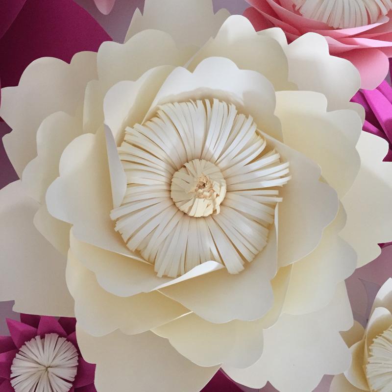 desconto 17 Flores Preço 7