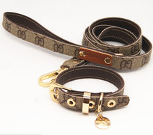 Fancy, trendy yorkie collar leash / necklace