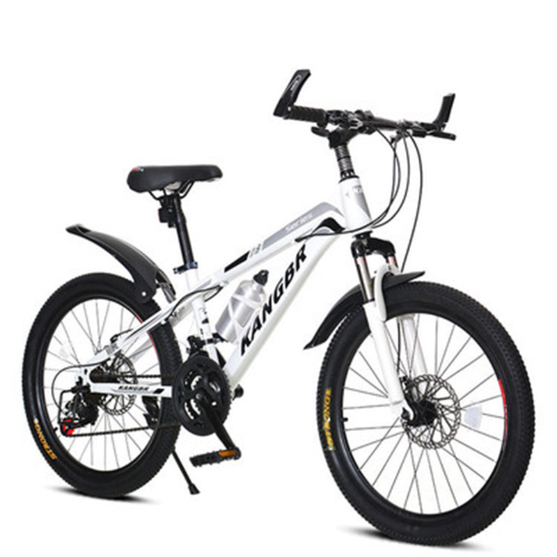 20-Inch Youth Speed Change Disc Shock Absorber Mountain Bike Primary And Secondary School Students Adult Mountain Bike