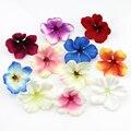 200 шт./лот весна Шелковый Орхидея Искусственный Цветок головы, гладиолус Cymbidium Цветы для Свадьбы Украшения