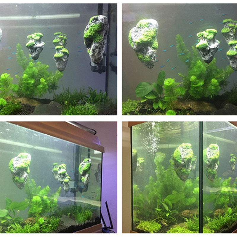 Floating aquarium ornaments 1000 aquarium ideas for Aquatic decoration