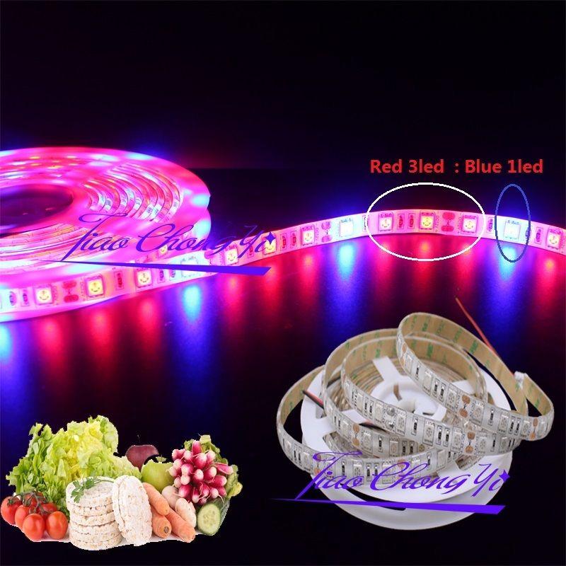 5M 5050 Red 3LED +Blue 1LED Grow Light Strip Lamp For Indoor Plants Flower Plant