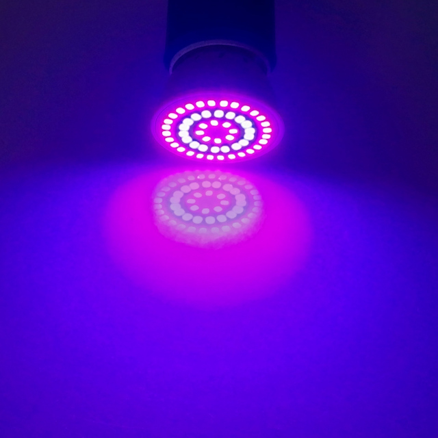 Led Grow Lamp Phyto Lamp E27 GU10 MR16 Light Led For Plant 220V Grow Light Red