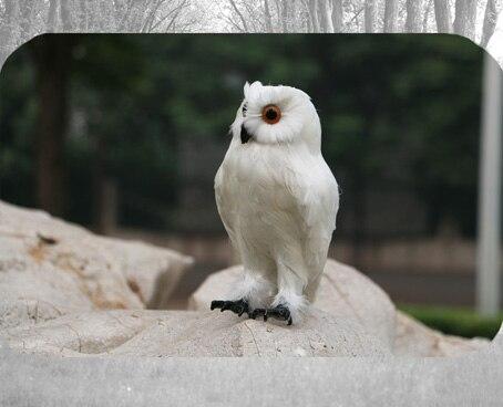 about 30cm simulation white night owl toy lifelike model garden decoration gift t035