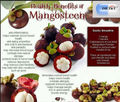 100% Pure Premium 200gram Mangosteen Extract Powder 20% Alpha - mangostin
