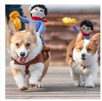 Riding Horse Dog Costume With Cowboy Hat For Small Dog Large Dog Pet Cat Funny Golden