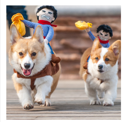 Riding Horse dog cowboy costume with hat for small dog large dog pet cat funny golden retriever Halloween Party costume clothes
