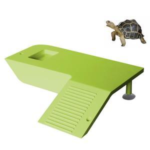 Turtle Frog Floating Island Aq