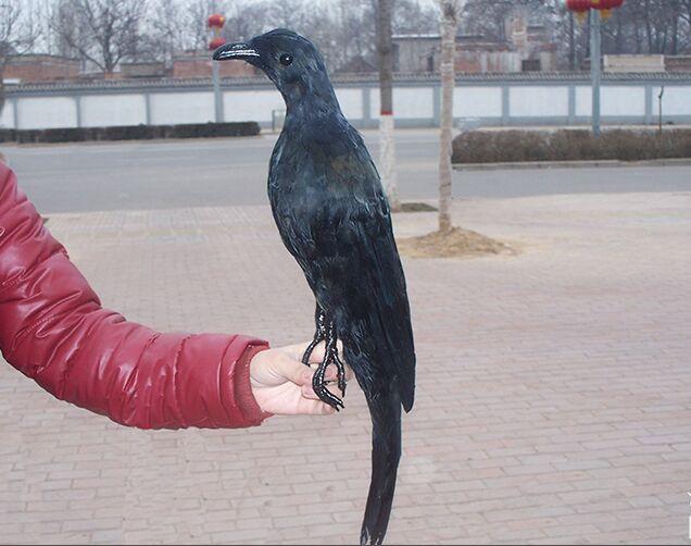Grand 50 cm simulation corbeau modèle dur mousse et plumes corbeau noir Halloween décoration prop, cadeau de décoration de fête s2700