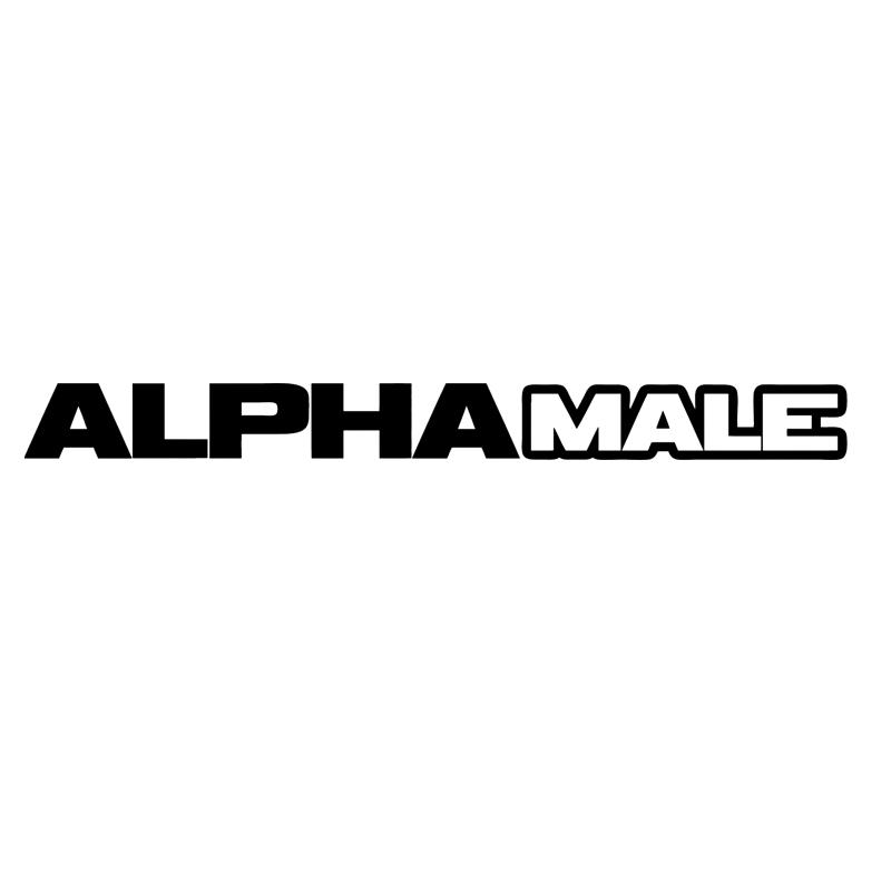 Online Get Cheap Bumper Cars Customized Aliexpresscom Alibaba - Car window decals custom online
