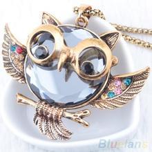 Women's Vintage Alloy Rhinestone Owl Pendant Long Chain Necklace 1P6I
