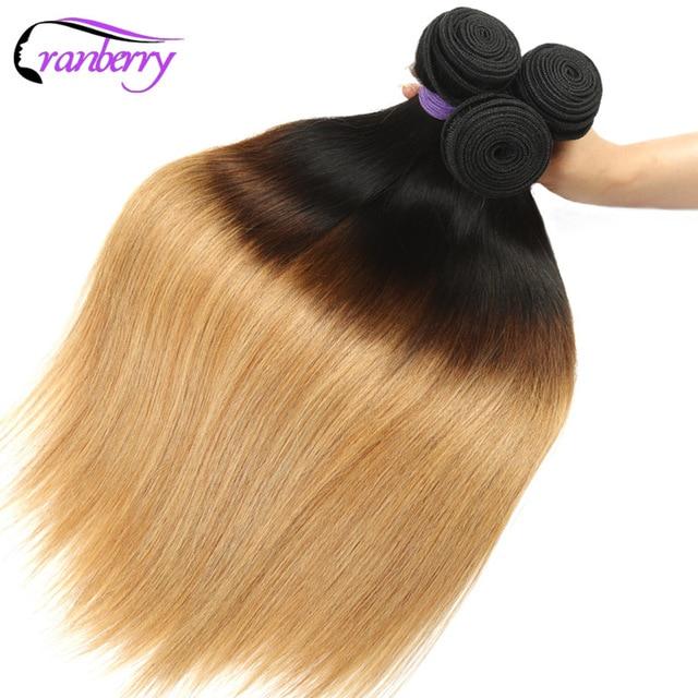Aliexpress Buy Cranberry Hair Ombre Brazilian Straight Human