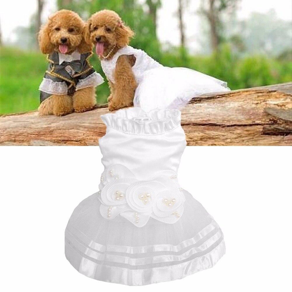 Ungewöhnlich Hochzeitskleid Für Hund Galerie - Brautkleider Ideen ...