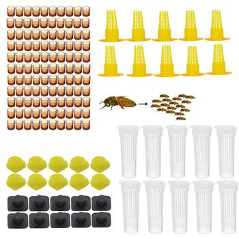 Kompletny zestaw do hodowli królowej pszczół system klatki zestaw narzędzi dla pszczół dostawca sprzęt narzędziowy baza komórki celularne komórka pszczelarstwo sprzedaż tanie i dobre opinie pledge agro PLQ-288 Queen bee rearing kit
