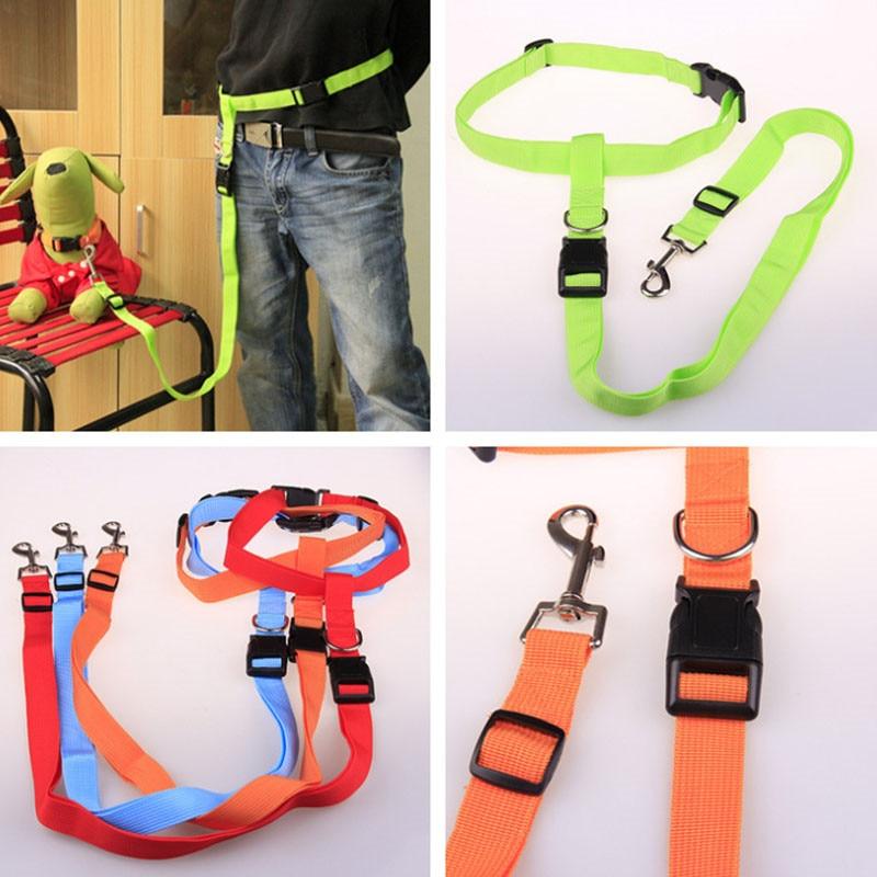New-Adjustable-nylon-pet-led-dog-collar-harness-for-small-dogs-Running-Jogging-Sport-Walking-leash (3)