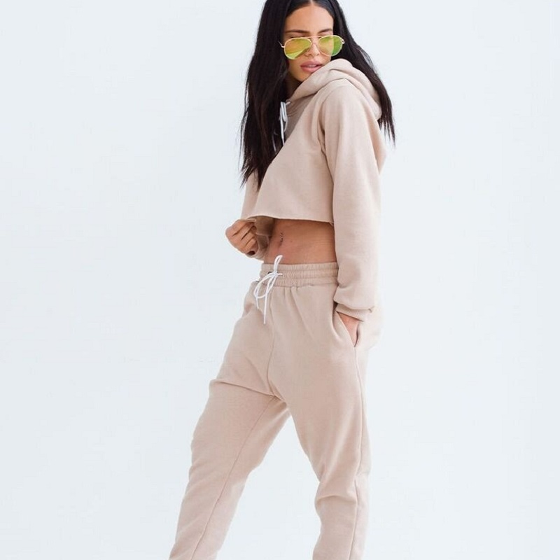Women Sexy Two Piece Set Tracksuit Cropped Top and Pants Ladies Casual Hooded Suits Sweatsuits for Women 2018 Spring Autumn