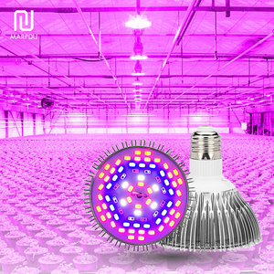 LED Grow Light Full Spectrum Growth Spotlight 80W 50W 30W 10W 5W AC85-265V LED Planting Lamp Bulb Phyto For Indoor Greenhouse