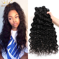 Brazilian Water Wave Brazilian Virgin Hair Ocean Wave 4pcs Lot Mink Hair Brazillian Curly Wet and Wavy Human Hair Bundles 1b