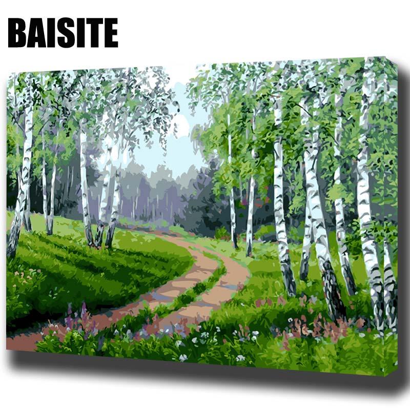 Φ_ΦBaisite DIY pintura al óleo enmarcada por números paisaje pintura ...