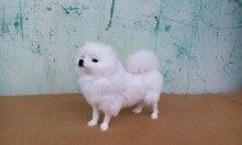 simulation white Pomeranian large 23x20cm model toy polyethylene & furs Pomeranian dog model,handicraft ,decoration gift t396