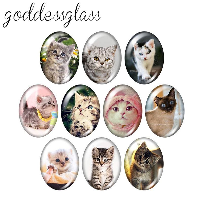 Lovely Cats Pet Animals 10pcs Mixed 13x18mm/18x25mm/30x40mm Oval Photo Glass Cabochon Demo Flat Back Making Findings TB0026