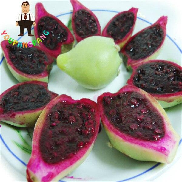 100 pz Fico Cactus Rare Dolce Nutriente Frutti Commestibili piante Fiore Giardino Bonsai Opuntia Leptocarpa