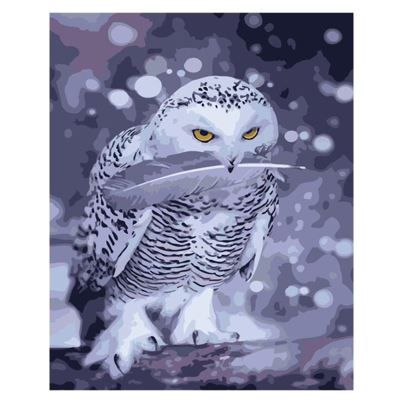 white owl Animal DIY Digital Painting By Numbers Modern Wall Art Canvas Painting Unique Gift Home Decor 40x50cm