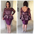 Purple Sheath Column Lace Sheath Column Cocktail Party Dress With Long Sleeve 2017 New Vestido De Festa Curto