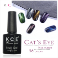 Cat eyes uv gel nail polish,gel polish for nails art,36 color UV Gel free shipping made in china