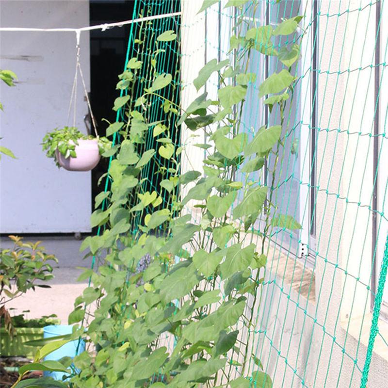 Nylon Flowers Trellis Netting Plant Wall Climbing Support