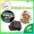 Venda melhor Shilajit Extrato 10:1 Cápsula 500 mg * 100 pcs
