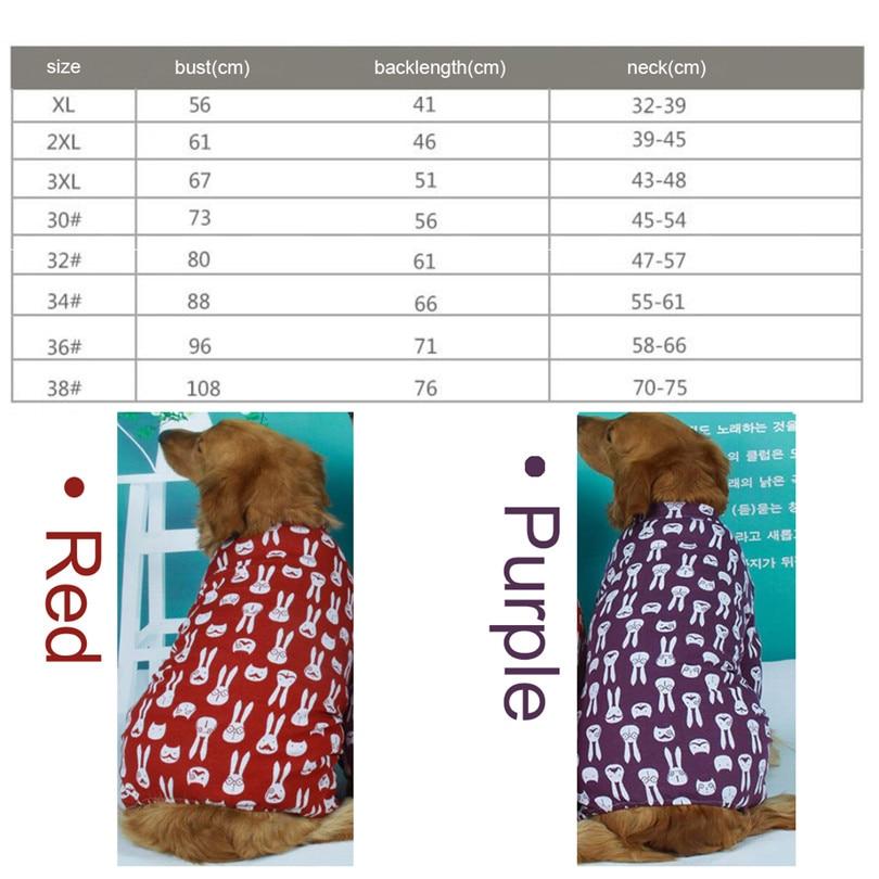 Golden retriever Dog coat (2)