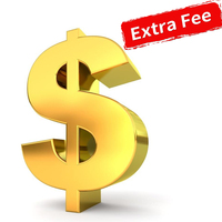 Shipping Cost / Extra Fee for Your Order As Discussed