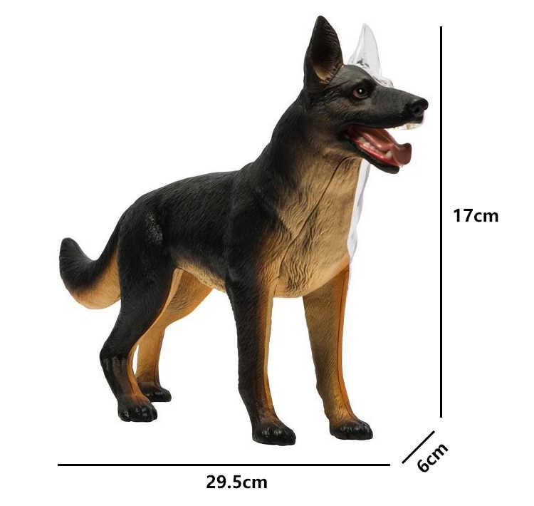 Hund Anatomie Modell//Puzzle 4D Vision Set #26115 Tedco Wissenschaft Spielzeug