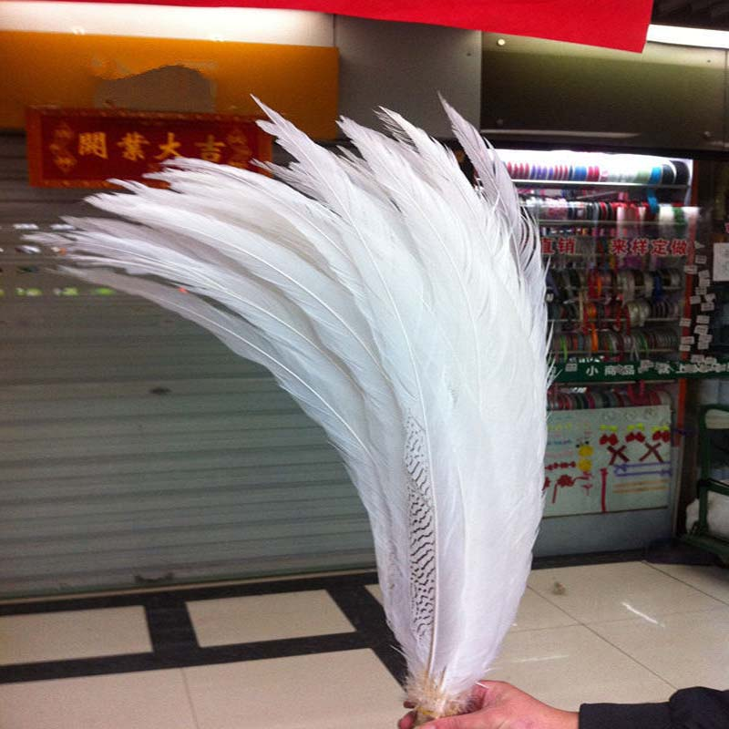 Wholesale !10 PCS Rare  beautiful Silver pheasant tail feathers  65-70cm /26-28inchesWholesale !10 PCS Rare  beautiful Silver pheasant tail feathers  65-70cm /26-28inches