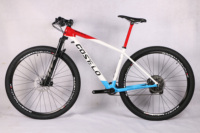2019 Costelo SOLO 2 carbon complete Mountain Mtb bicycle bike 29er Thru axle carbon frame carbon wheels with original groups