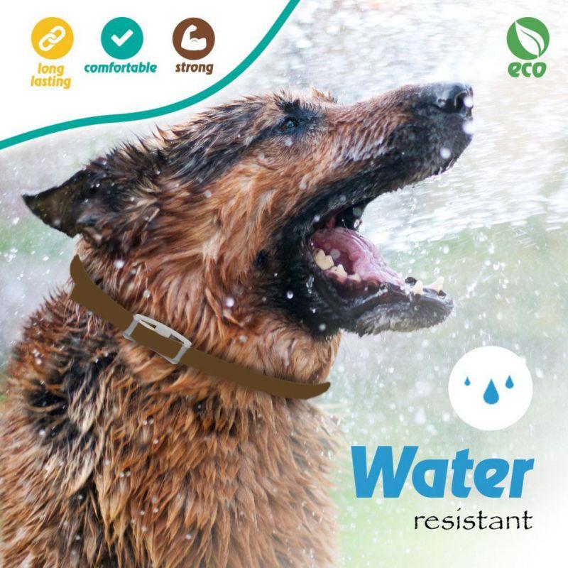 สุนัขสัตว์เลี้ยงป้องกันหมัดและเห็บขับไล่Remover,น้ำมันหอมระเหยธรรมชาติปกขับไล่หมัดและเห็บปล...