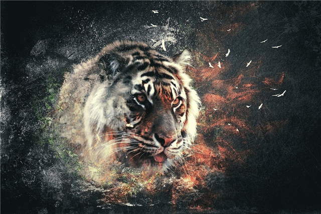 Custom Canvas Art Abstract Tiger Poster Tiger Wallpaper Animal Wall