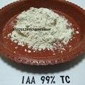 10 gramos 3-Indoleacetic ácido 99% TC (IAA) Indole-3-acetic ácido Indol acético ácido