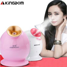 Nano Ionic Facial Mist Sprayer Hot Mist Moisturizing Cleaning Whitening Skin Humidifier Thermal Spa Face Steamer