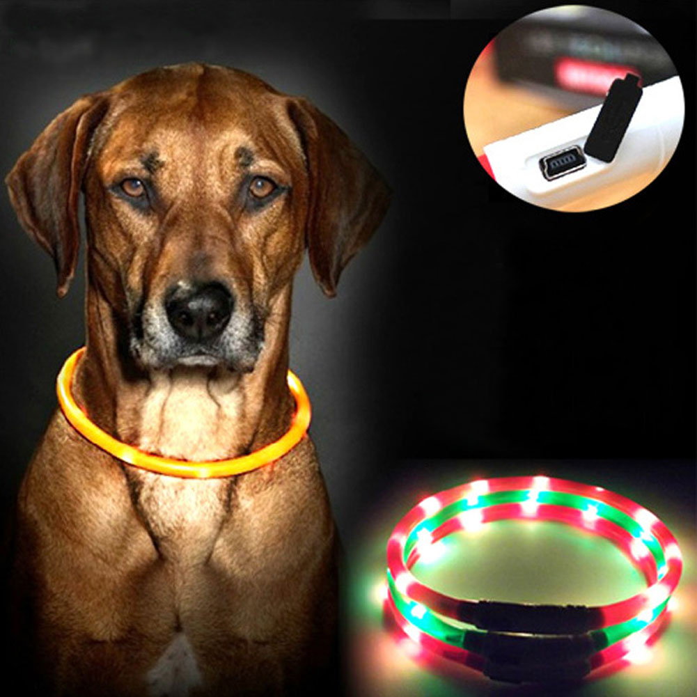 Collar de perro Luces Led Ajustable USB luminoso Collar de perro Led Carga USB petdog Teddy Led Light Collares para perros grandes