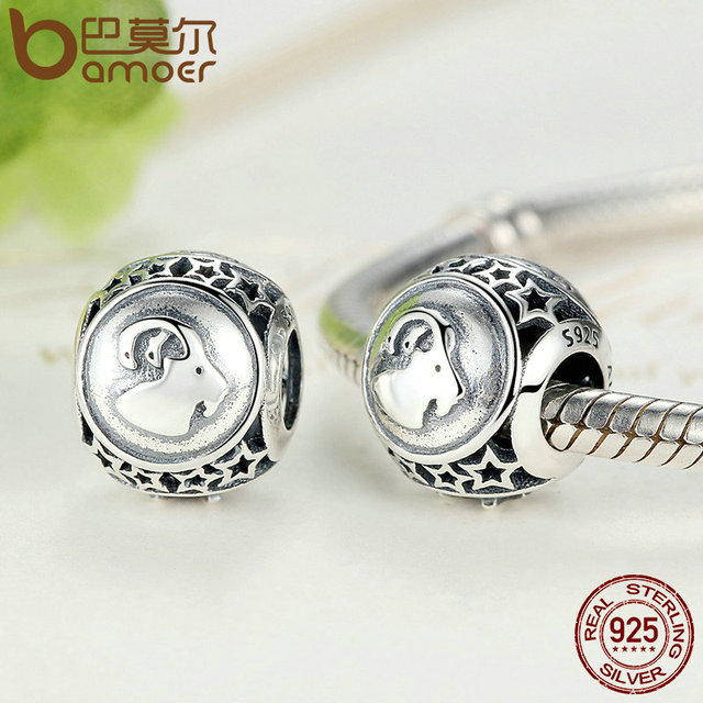 Sterling Silver Capricorn Star Sign Zodiac Beads Charm
