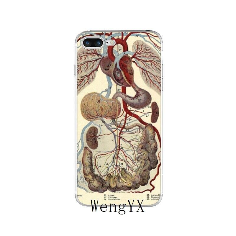 Vintage Medical Anatomical Heart Diagram Slim Soft Phone Case For