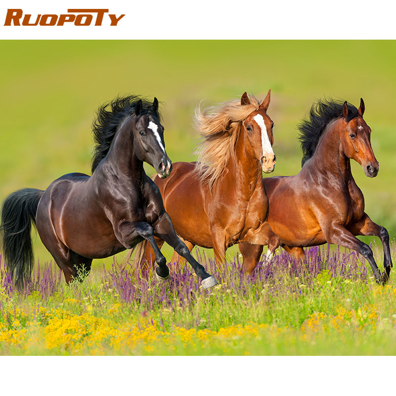 RUOPOTY Painting-By-Numbers-Kit Wall-Art Horse-Coloring Modern Home-Decors For 60x75cm-Frame