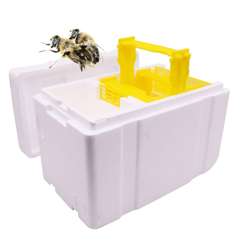 Image 2 - Bee Hive Beekeeping King Box Pollination Box Foam Frames Beekeeping Tool Kit-in Beekeeping Tools from Home & Garden